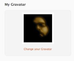 gravatar in Profile page
