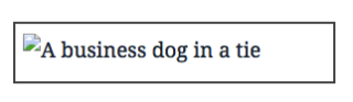 "Alt text displaying ""A business dog in a tie"""