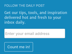 Follow Blog widget