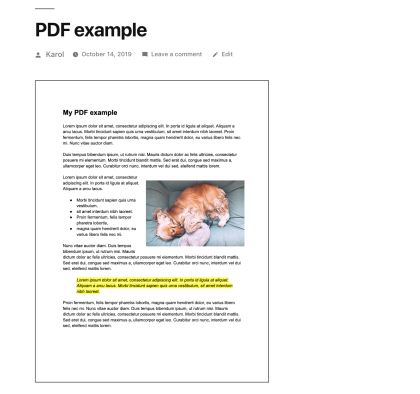 PDF example b