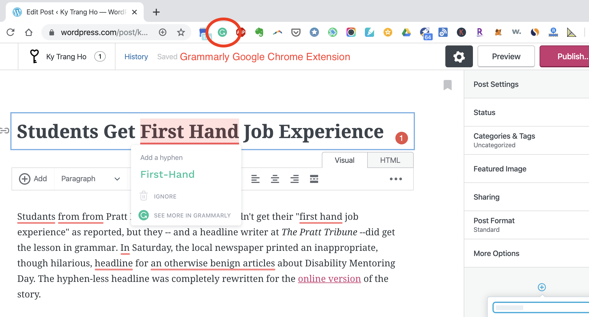 screenshot of Grammarly highlighting grammar and spelling mistakes in WordPress.com post