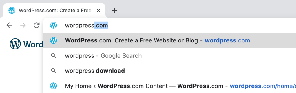 favicons displayed in a browser search bar